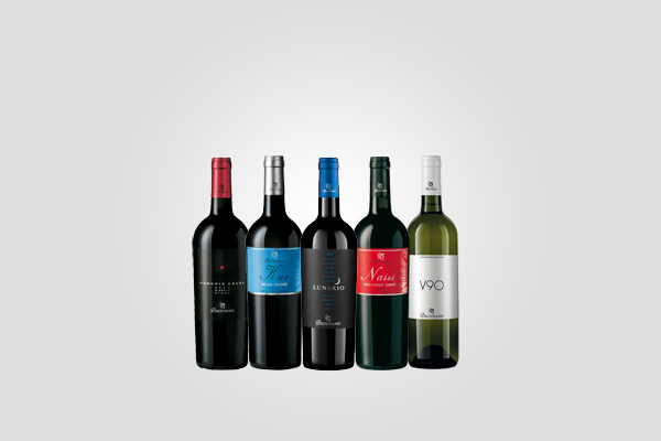 Brugnano wines promote brand with iCleverWeb DSM, EMM e digital marketing solutions